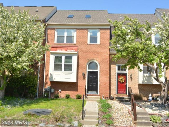 1347 Riverwood Way, Stoney Beach, MD 21226 (#AA10239243) :: Charis Realty Group