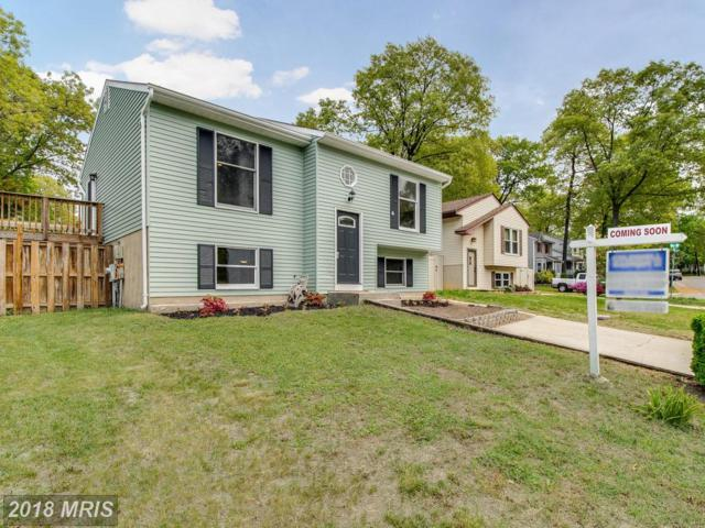 7845 Fernhill Avenue, Pasadena, MD 21122 (#AA10243270) :: Advance Realty Bel Air, Inc