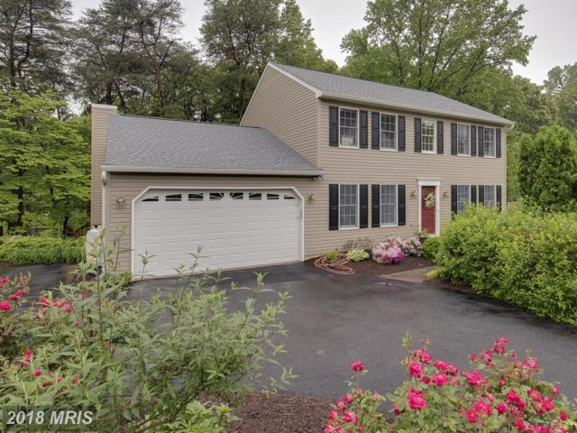 531 Bay Hills Drive, Arnold, MD 21012 (#AA10246308) :: Jim Bass Group of Real Estate Teams, LLC