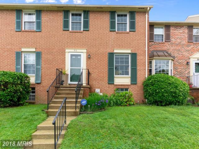 913 Spry Harbour, Pasadena, MD 21122 (#AA10247022) :: The Sebeck Team of RE/MAX Preferred