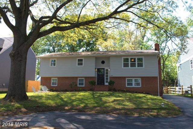 1140 Riverview Drive, Annapolis, MD 21409 (#AA10247716) :: The Sebeck Team of RE/MAX Preferred