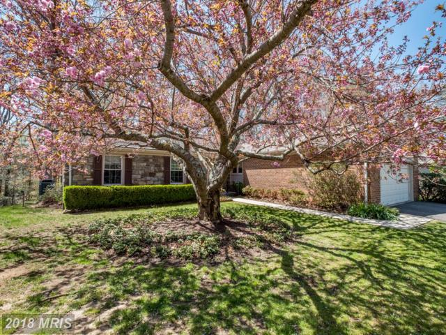 855 Clubhouse Village View, Annapolis, MD 21401 (#AA10251171) :: Advance Realty Bel Air, Inc