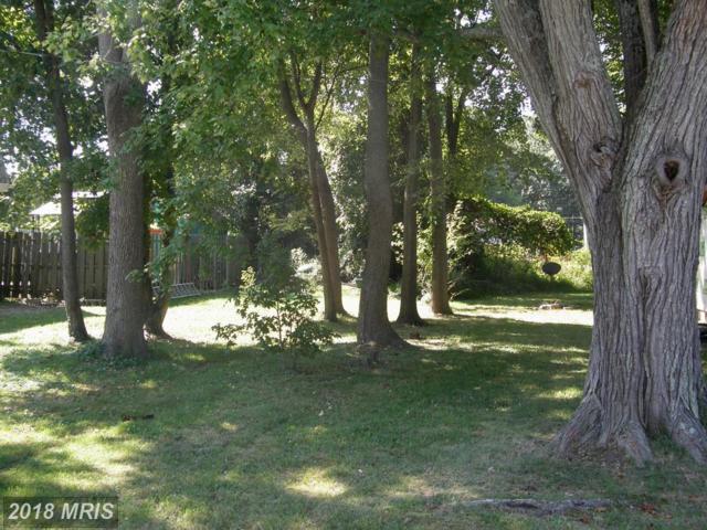 1171 Oak Avenue, Shady Side, MD 20764 (#AA10251205) :: Advance Realty Bel Air, Inc