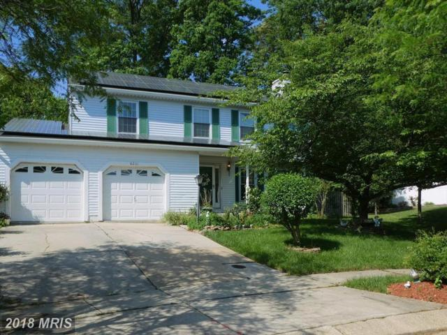 8201 Deerbrooke Court, Pasadena, MD 21122 (#AA10252337) :: Provident Real Estate