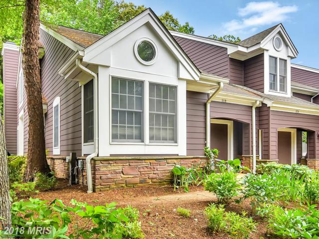 119 Summer Village Drive, Annapolis, MD 21401 (#AA10257918) :: Bob Lucido Team of Keller Williams Integrity