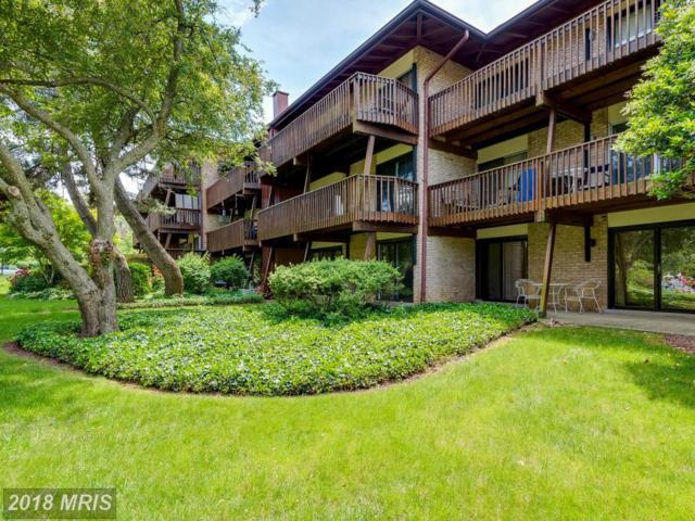 793 Fairview Avenue B, Annapolis, MD 21403 (#AA10258061) :: SURE Sales Group