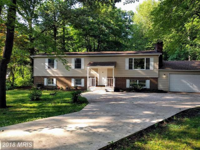 232 Wiltshire Lane, Severna Park, MD 21146 (#AA10262730) :: The Gus Anthony Team