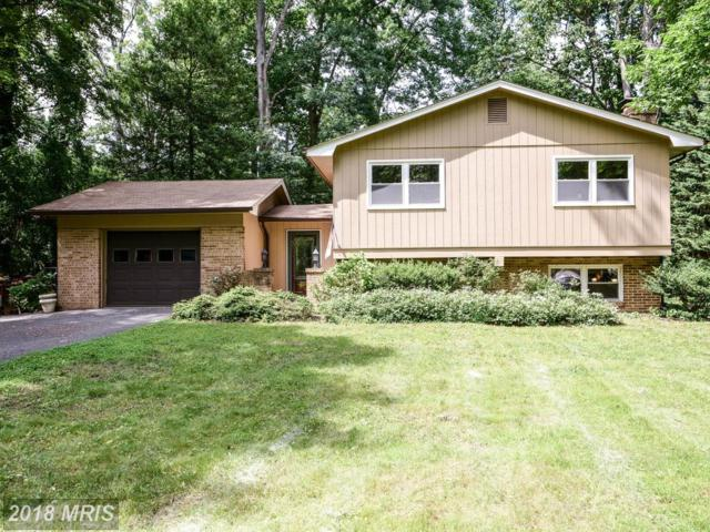 1029 Harbor Drive, Annapolis, MD 21403 (#AA10264671) :: The Gus Anthony Team
