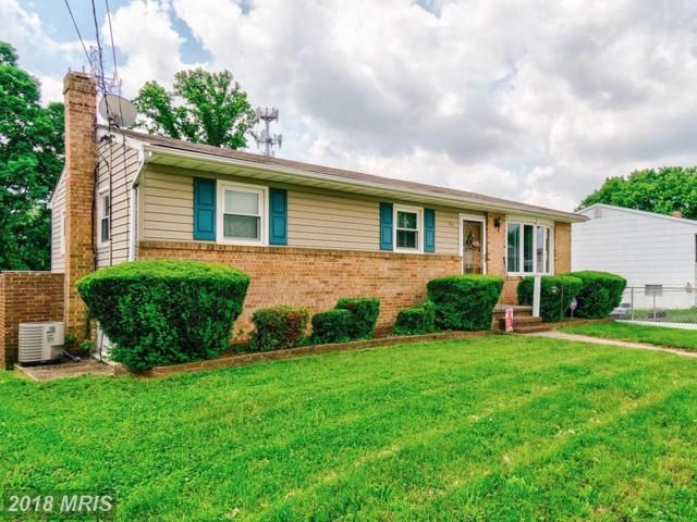 335 Holy Cross Road, Baltimore, MD 21225 (#AA10265615) :: RE/MAX Cornerstone Realty