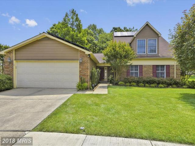 849 Rudder Way, Annapolis, MD 21401 (#AA10266253) :: The Gus Anthony Team