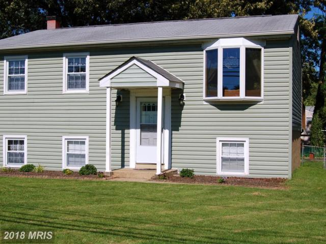 8011 Outing Avenue, Pasadena, MD 21122 (#AA10270890) :: The Gus Anthony Team