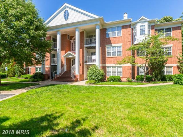 2403 Forest Edge Court 303 C, Odenton, MD 21113 (#AA10273034) :: Wilson Realty Group