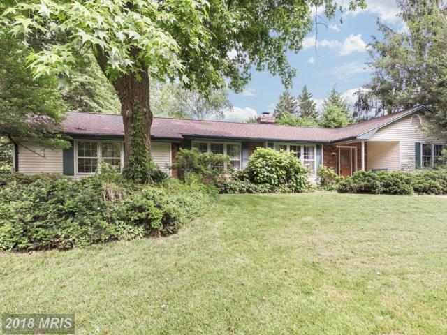 1117 Mainsail Drive, Annapolis, MD 21403 (#AA10273130) :: ExecuHome Realty