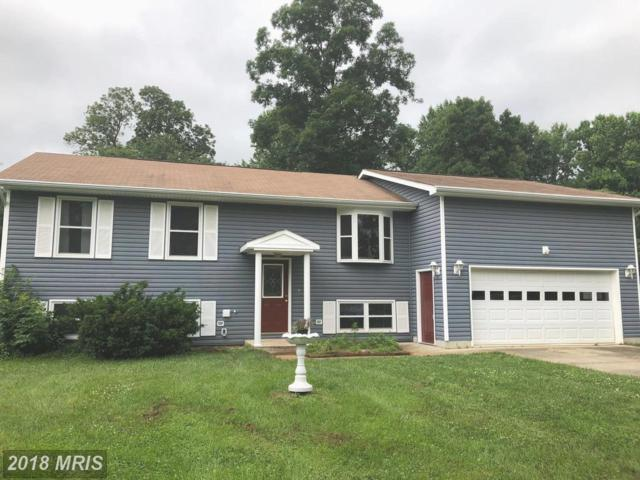1350 W Central Avenue, Davidsonville, MD 21035 (#AA10276267) :: The Bob & Ronna Group