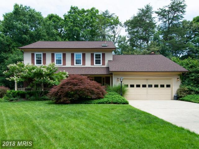 252 Lindenhall Court, Riva, MD 21140 (#AA10276891) :: Keller Williams Preferred Properties