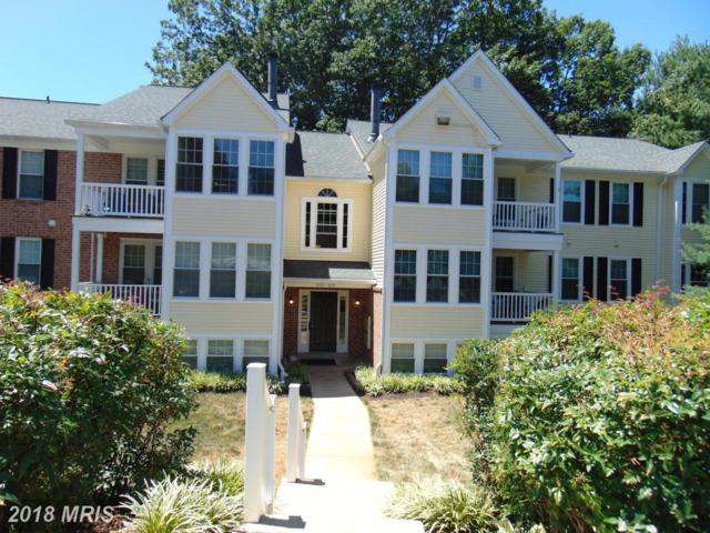 602 Southern Hills Drive A-1B, Arnold, MD 21012 (#AA10289695) :: Maryland Residential Team