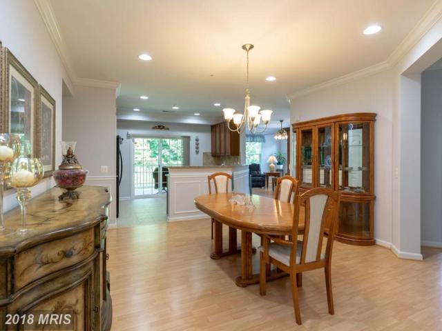 1404 Wigeon Way #304, Gambrills, MD 21054 (#AA10293547) :: Maryland Residential Team
