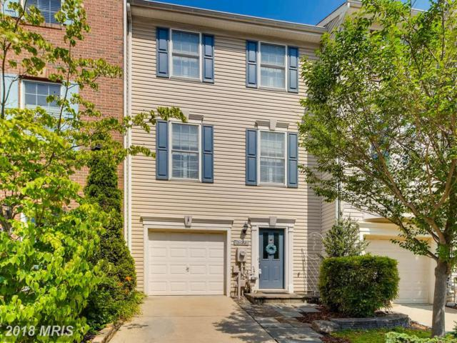 2122 Millhaven Drive #16122, Edgewater, MD 21037 (#AA10297440) :: Maryland Residential Team