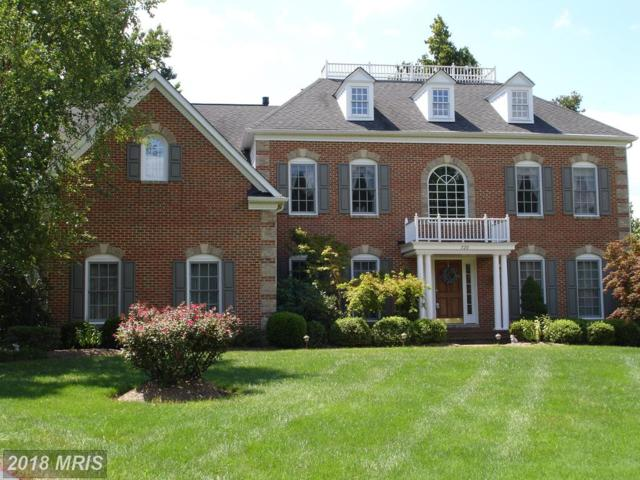720 Cyprian Court, Gambrills, MD 21054 (#AA10297597) :: Maryland Residential Team