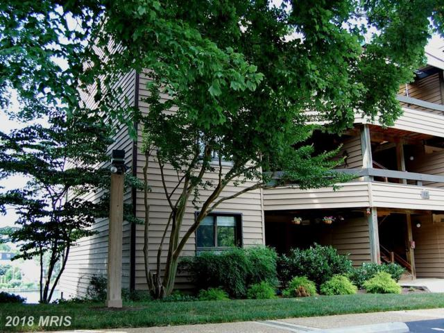 10 President Point Drive A1, Annapolis, MD 21403 (#AA10298024) :: Bob Lucido Team of Keller Williams Integrity
