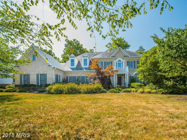 703 Childs Point Road, Annapolis, MD 21401 (#AA10298180) :: Bob Lucido Team of Keller Williams Integrity