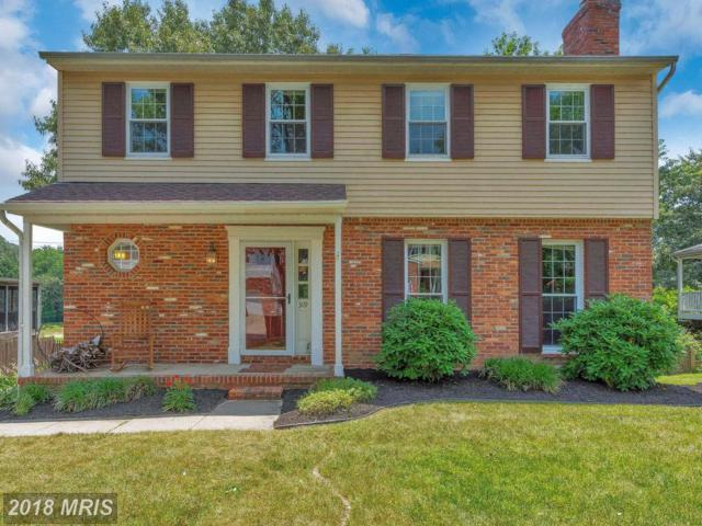 319 Silky Oak Court, Linthicum, MD 21090 (#AA10299137) :: TVRG Homes