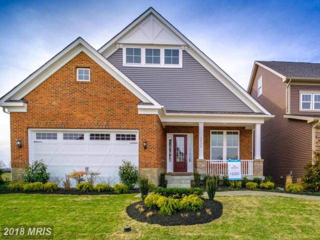 2896 Broad Wing Drive, Odenton, MD 21113 (#AA10299982) :: Maryland Residential Team