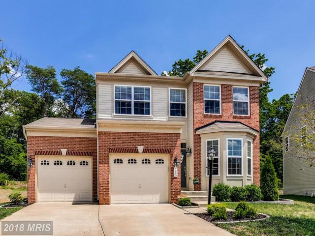 7203 Stallings Drive, Glen Burnie, MD 21060 (#AA10300006) :: Maryland Residential Team