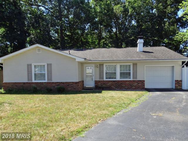 1009 Jason Court, Gambrills, MD 21054 (#AA10302323) :: Maryland Residential Team