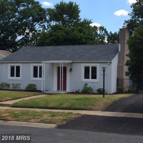 713 Cotter Road, Glen Burnie, MD 21060 (#AA10302356) :: Maryland Residential Team