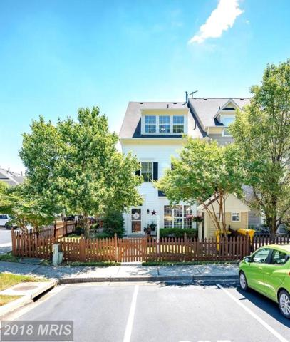 821 Estuary Drive, Odenton, MD 21113 (#AA10302575) :: Maryland Residential Team