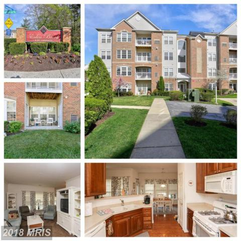 2608 Hoods Mill Court 3-103, Odenton, MD 21113 (#AA10303229) :: Frontier Realty Group
