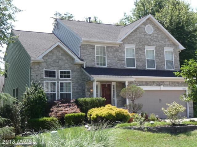 1204 Jewelweed Path, Pasadena, MD 21122 (#AA10303697) :: The Sebeck Team of RE/MAX Preferred