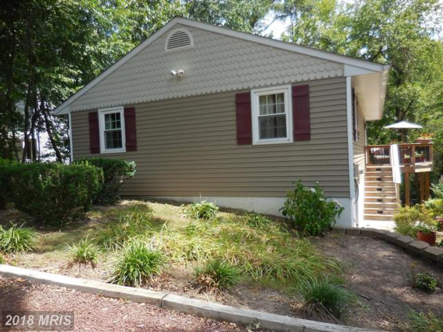 221 C Street, Pasadena, MD 21122 (#AA10304234) :: Bob Lucido Team of Keller Williams Integrity