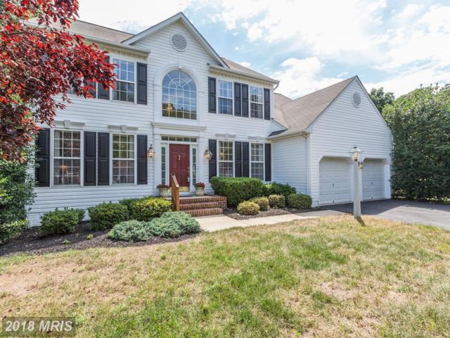 205 Prize Taker Court, Pasadena, MD 21122 (#AA10304450) :: The Sebeck Team of RE/MAX Preferred
