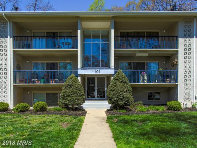1101 Primrose Court #302, Annapolis, MD 21403 (#AA10307404) :: Bob Lucido Team of Keller Williams Integrity