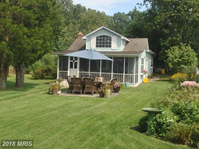 1218 West River Rd, Shady Side, MD 20764 (#AA10318545) :: Keller Williams Pat Hiban Real Estate Group