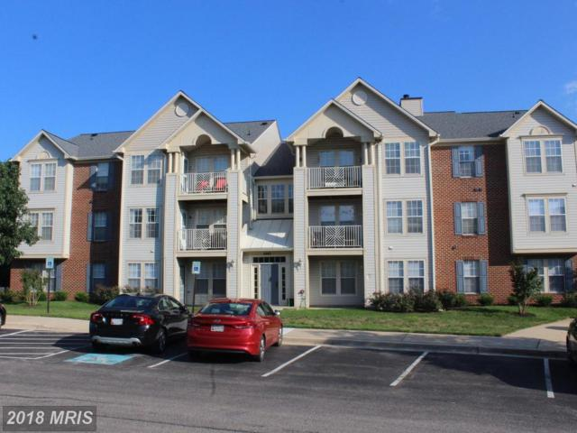 2445 Blue Spring Court #101, Odenton, MD 21113 (#AA10320382) :: Pearson Smith Realty