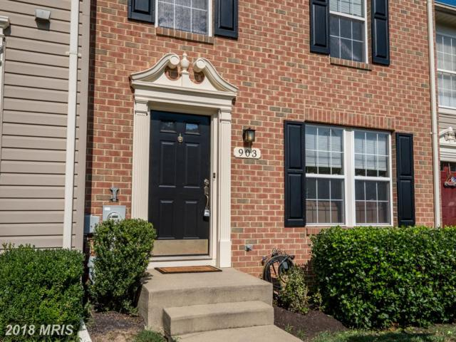 903 Nanticoke Run Way, Odenton, MD 21113 (#AA10321626) :: RE/MAX Executives