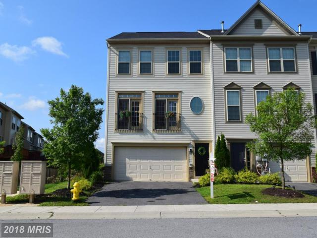 1135 Carinoso Circle, Severn, MD 21144 (#AA10323859) :: The Maryland Group of Long & Foster