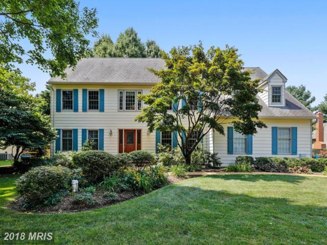 1476 Sharps Point Road, Annapolis, MD 21409 (#AA10324013) :: Gail Nyman Group