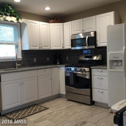 7946-EAST Shore Road, Pasadena, MD 21122 (#AA10324886) :: The Riffle Group of Keller Williams Select Realtors