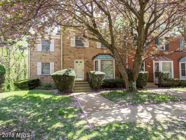 529 Bay Dale Court, Arnold, MD 21012 (#AA10325814) :: The Bob & Ronna Group