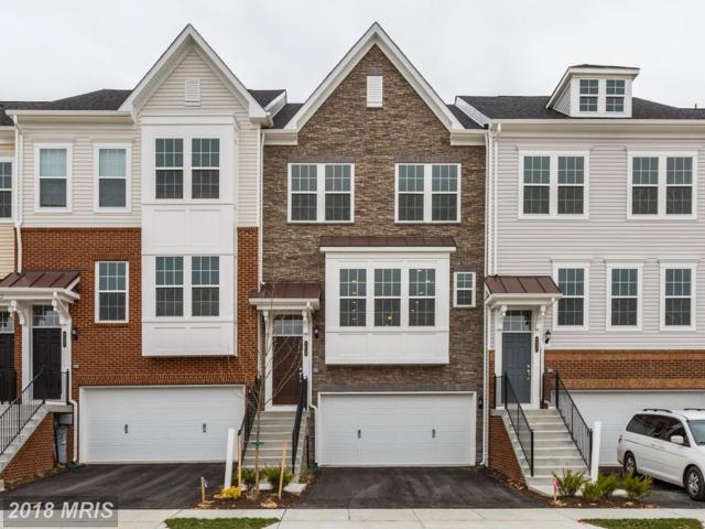 8239 Meadowood Drive #0, Hanover, MD 21076 (#AA10333630) :: The Maryland Group of Long & Foster