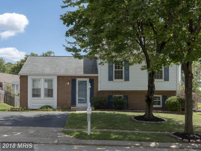 816 Sunnyfield Lane, Baltimore, MD 21225 (#AA10334557) :: The Maryland Group of Long & Foster