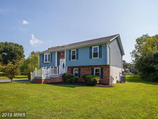 7815 Burgess Road, Pasadena, MD 21122 (#AA10334687) :: The Maryland Group of Long & Foster