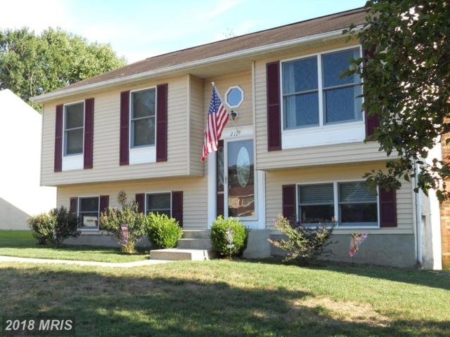 311 Long Meadow Way, Arnold, MD 21012 (#AA10338743) :: RE/MAX Plus