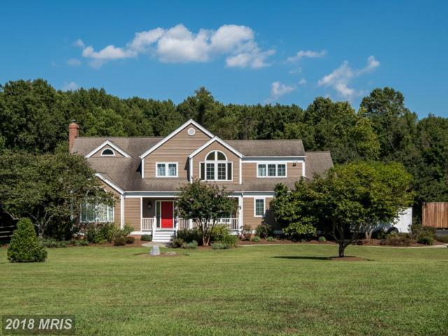 4439 Windsor Farm Road, Harwood, MD 20776 (#AA10341112) :: Browning Homes Group