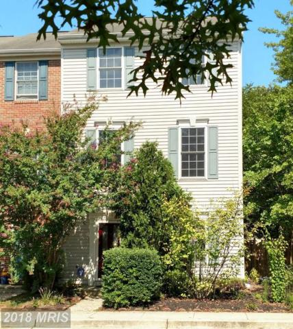 60 Millhaven Court, Edgewater, MD 21037 (#AA10341764) :: RE/MAX Executives