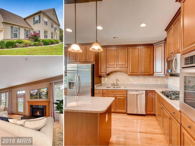 7631 Found Artifact Drive, Odenton, MD 21113 (#AA10347264) :: Keller Williams Pat Hiban Real Estate Group